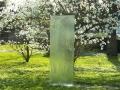 2017.04.05. Glasskulptur von der Rückseite vor blühenden Magnolienbüschen - Antiphon (15)a_B_Schuster