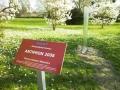 2017.04.05. Schild nah im Vordergrund - Glasskulptur Antiphon (16)a_B_Schuster